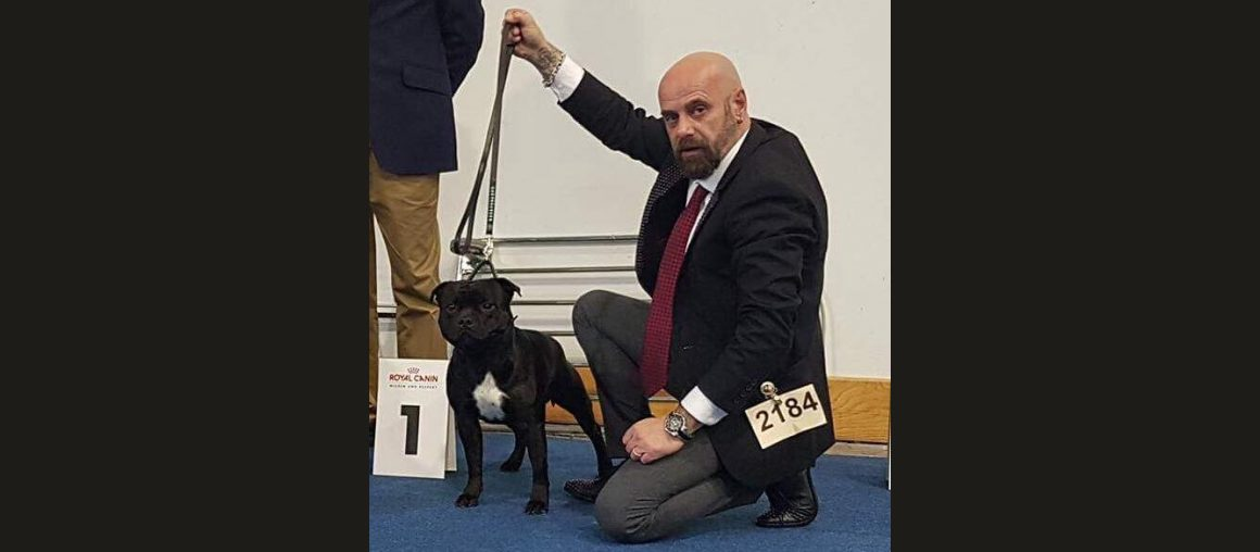 Nationale Hundesausstellung Kassel