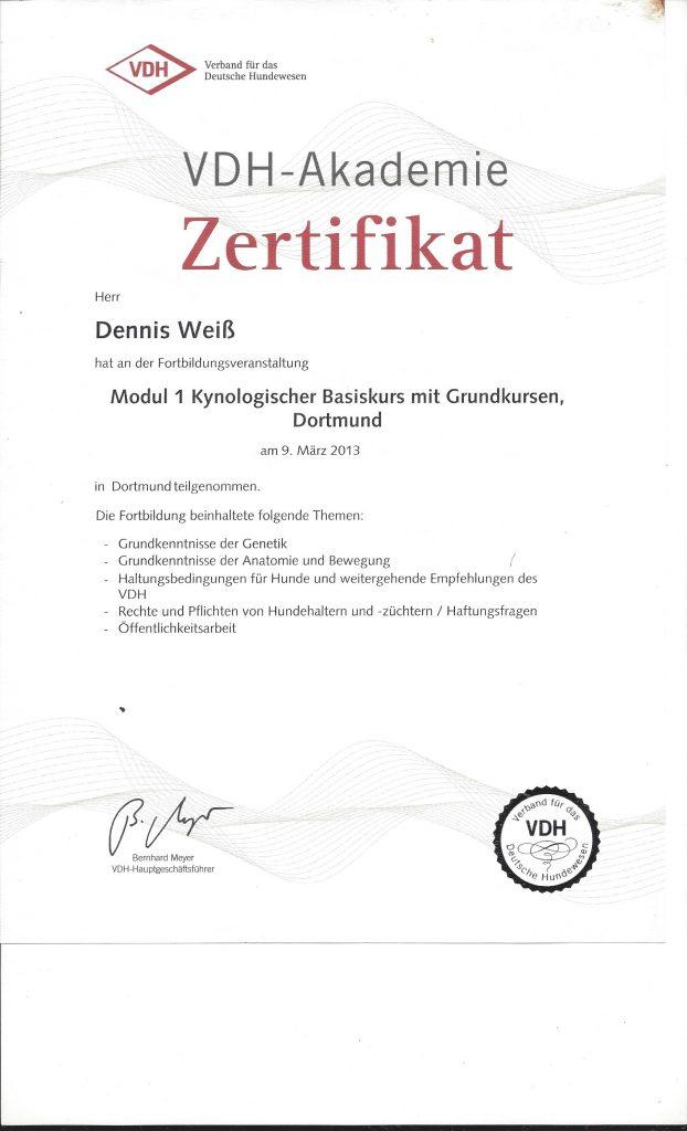 VDH Zertifikat Modul 1