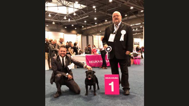 World Dog Show Leipzig 2017