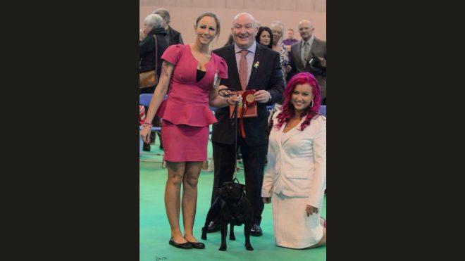 Crufts 2014- weltgrösste Hundeausstellung