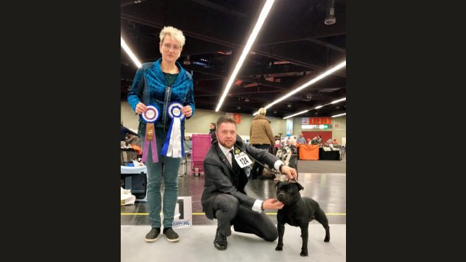 Bester Rüde auf der Hundeausstellung in Nürnberg