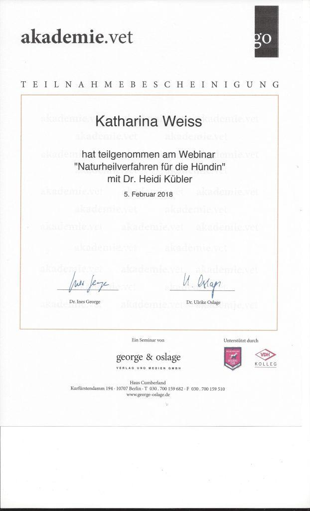 Zertifikat Vet Akademie