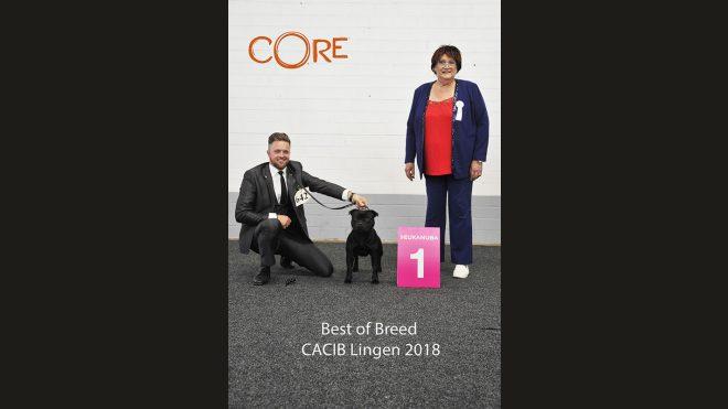 Internationale Hundeausstellung Lingen 2018