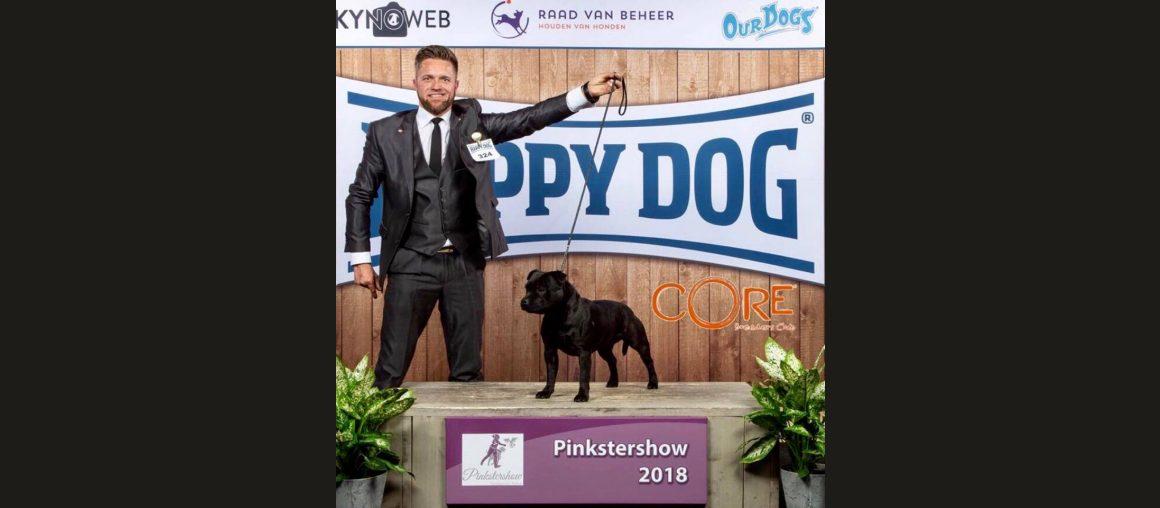 Ein toller Erfolg in Arnhem/Holland für unsere Pippa
