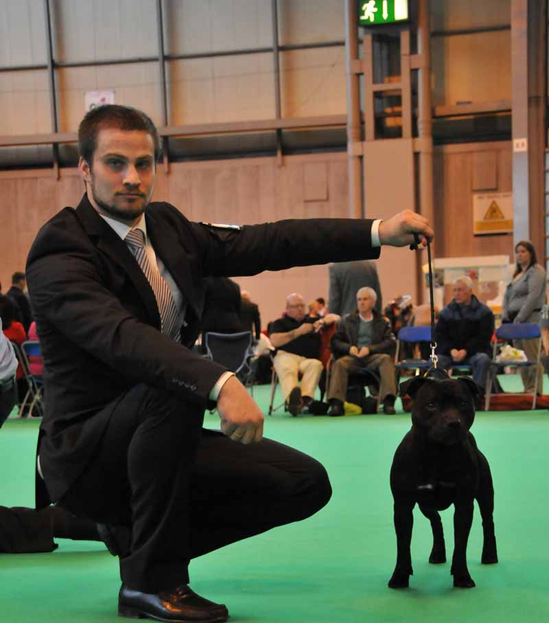 Enter Sandman Crufts