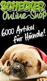 Links_Schecker