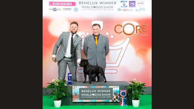 Benelux Winner 2018