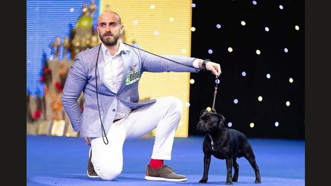 International Dog Show Kiev 2018