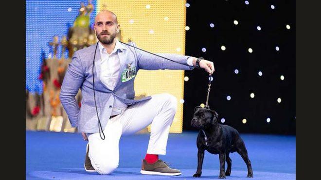 International Dog Show Kiev 2018