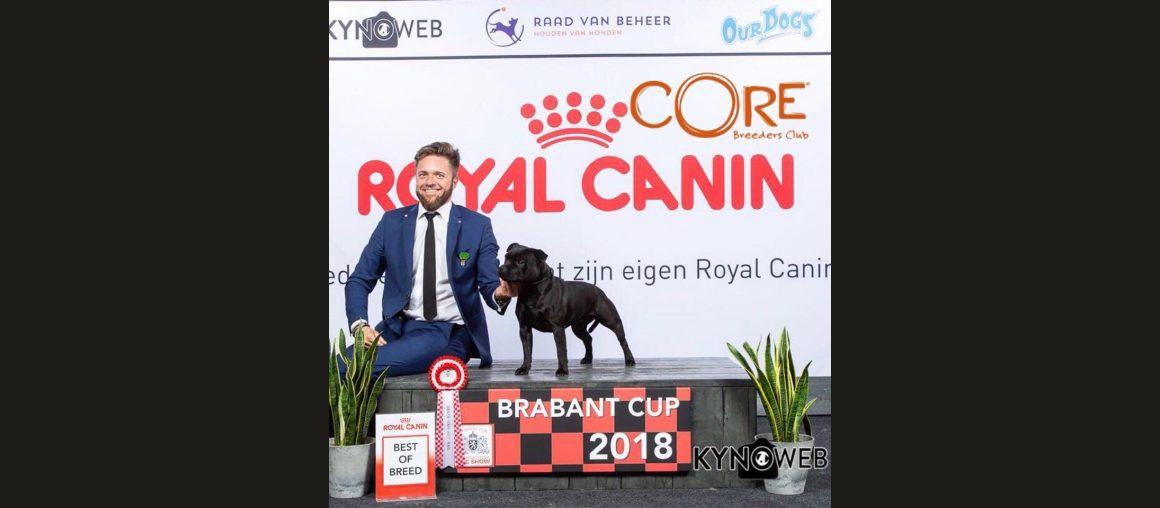 International Dog Show Netherlands