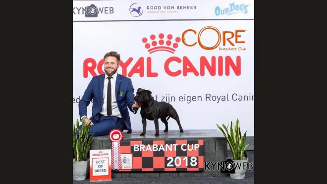 International Dog Show Netherlands