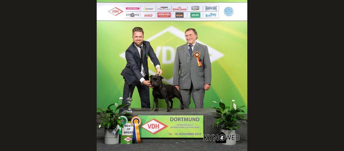 Neuer deutscher Champion