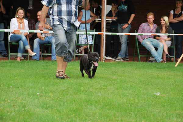 Sommerfest_2011_5