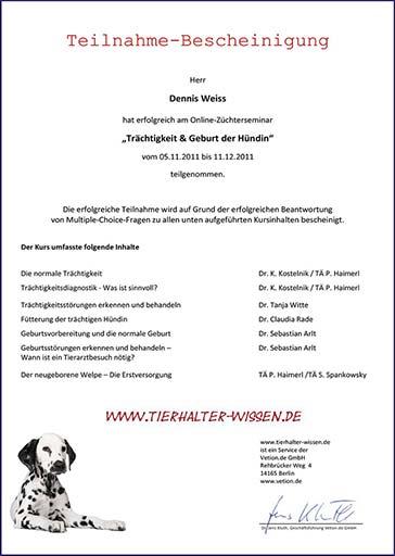 Weiterbildung_Zertifikat_10