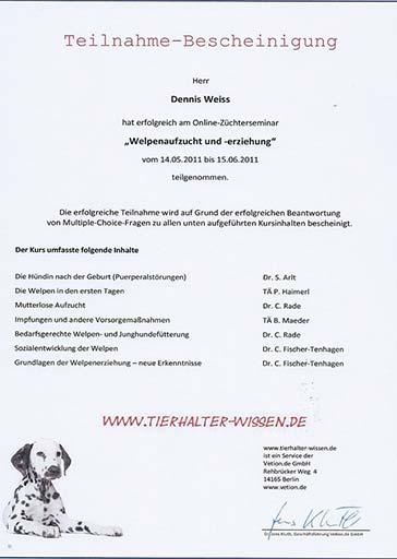 Weiterbildung_Zertifikat_12