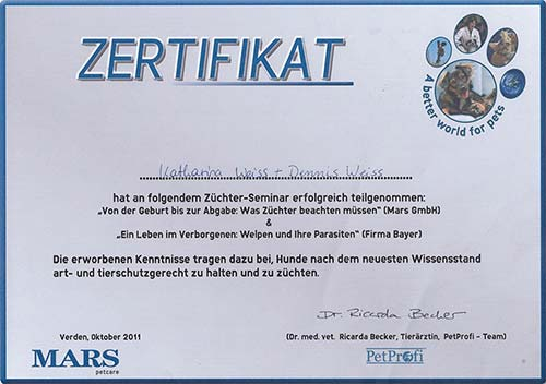 Weiterbildung_Zertifikat_14