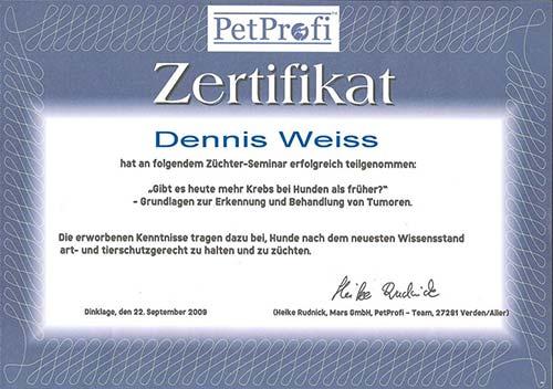 Weiterbildung_Zertifikat_17