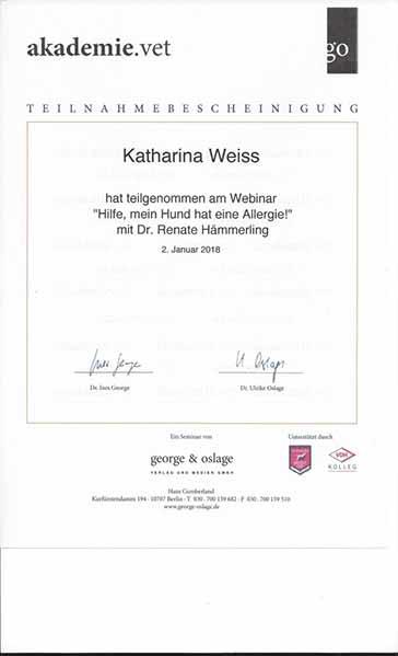 Weiterbildung_Zertifikat_2