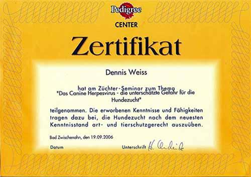 Weiterbildung_Zertifikat_23