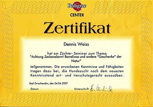 Weiterbildung_Zertifikat_24