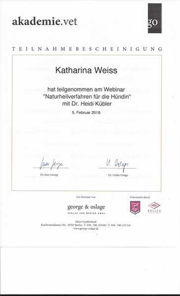 Weiterbildung_Zertifikat_3