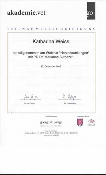 Weiterbildung_Zertifikat_5