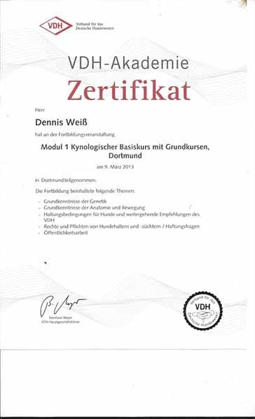 Weiterbildung_Zertifikat_7
