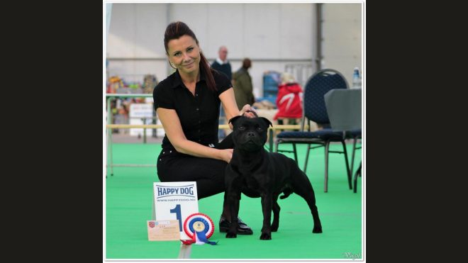 Internationale Dog Show Bleiswijk/Holland 2018
