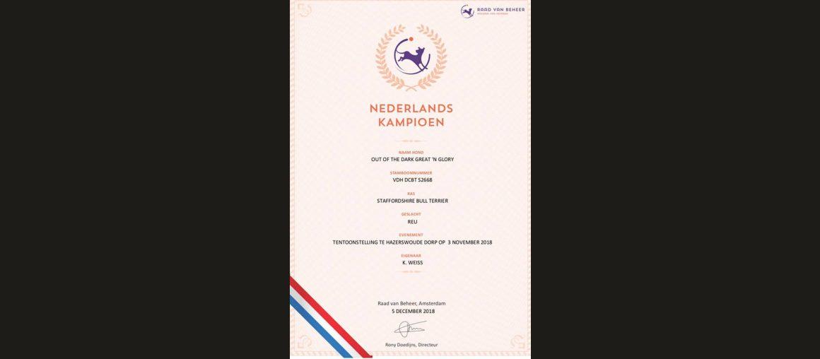 Champion in den Niederlanden