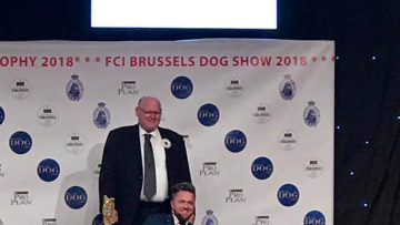 FCI Brussels Dog Show