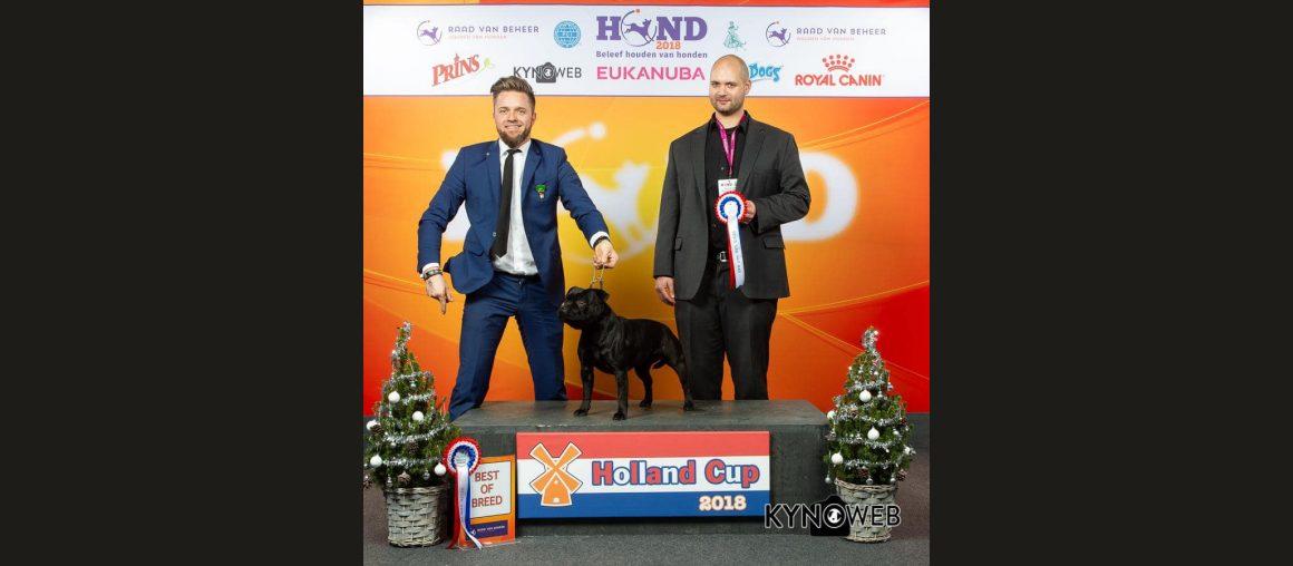 Best of Breed - CACIB Amsterdam Holland Cup Winner 2018