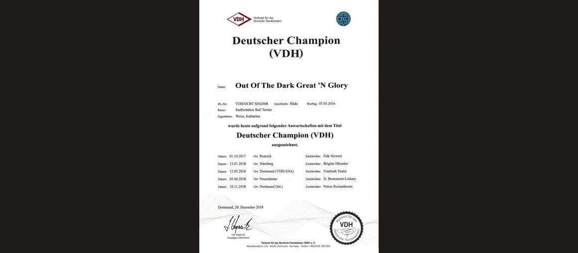 Ein neuer Champion Titel für Darko