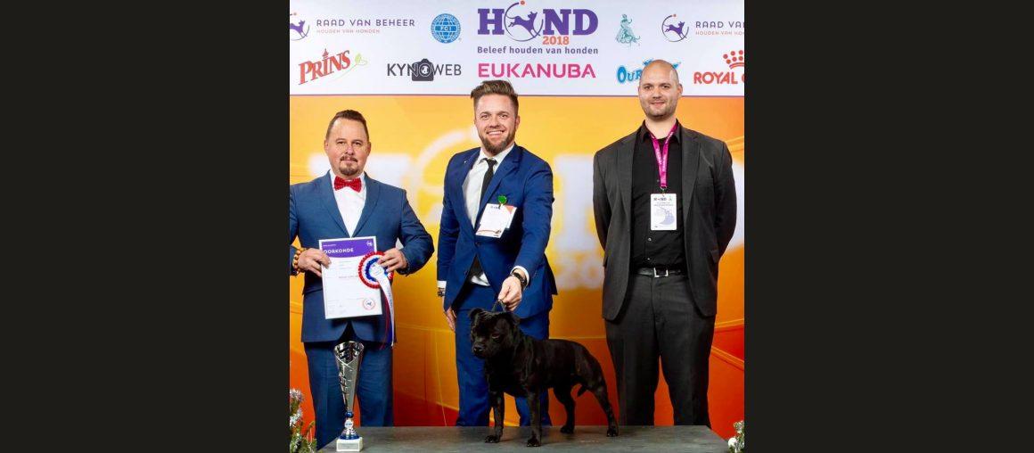 Top Terrier Benelux 2018