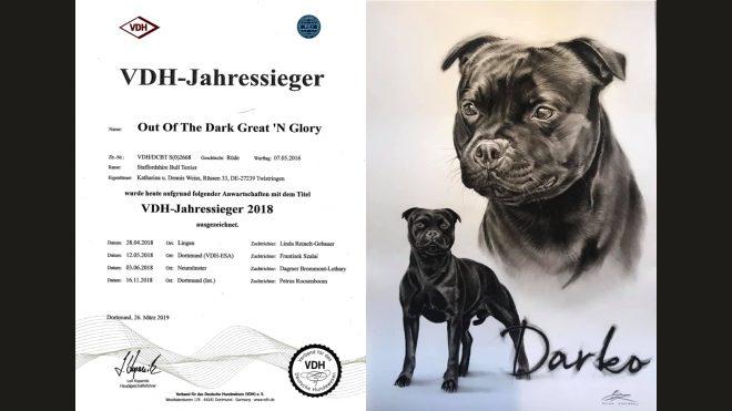 VDH Jahressieger 2018
