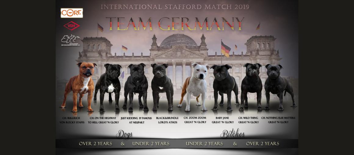 """5 unserer Hunde treten auf dem """"ISM"""" an..."""