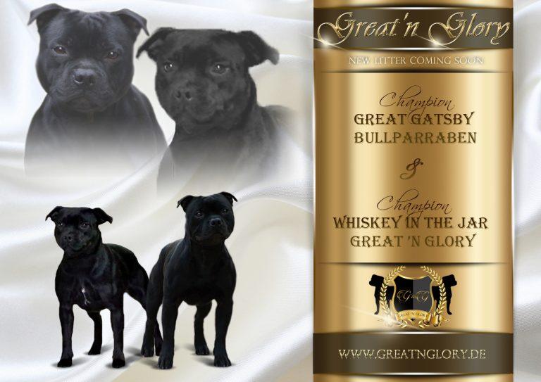 GreatnGlory Verpaarung