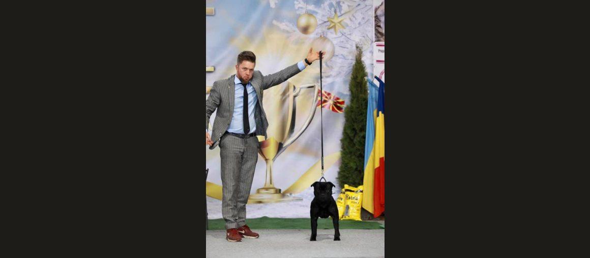 Neuer Champion & Grand Champion of Macedonia 🇲🇰